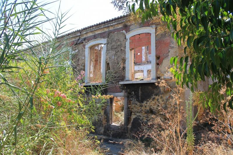 marvila palm house
