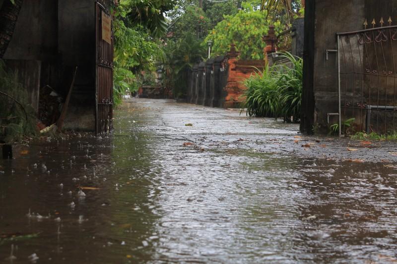 rain bali paddle