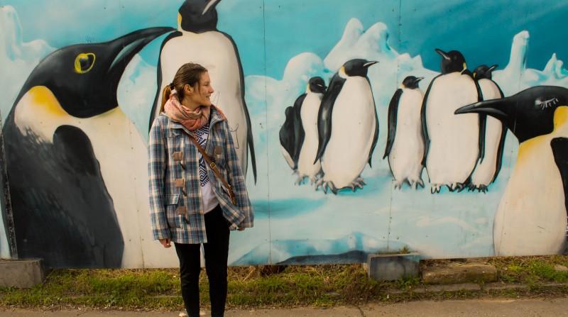 Prague streetart, Argentinská, penguins