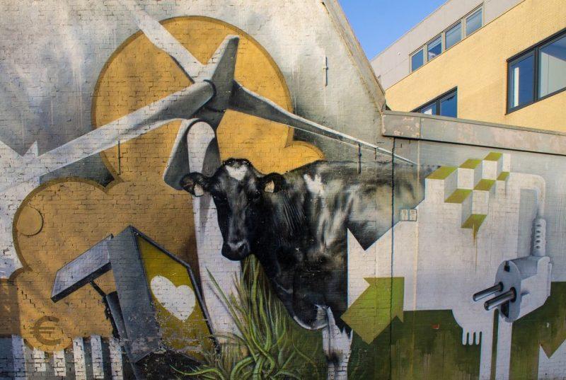 Cow streetart, Leeuwarden