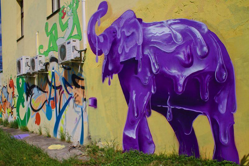 elephant, prague streetart, Bubeneč