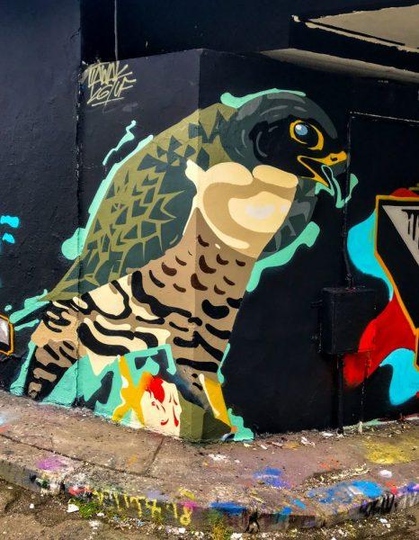 Bird, Street art, Těšnov, Prague