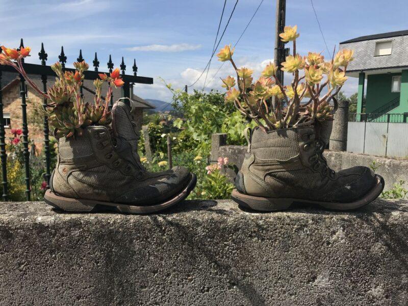 Shoe flowe pots, Camino Portugues